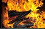 Горящие дрова, эксклюзивное фото № 2552811, снято 14 мая 2011 г. (c) Юрий Морозов / Фотобанк Лори