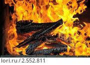 Купить «Горящие дрова», эксклюзивное фото № 2552811, снято 14 мая 2011 г. (c) Юрий Морозов / Фотобанк Лори