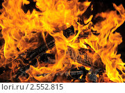 Купить «Горящие дрова», эксклюзивное фото № 2552815, снято 14 мая 2011 г. (c) Юрий Морозов / Фотобанк Лори