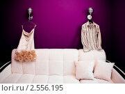 Купить «Платье невесты и рубашка жениха», фото № 2556195, снято 8 мая 2009 г. (c) Фадеева Марина / Фотобанк Лори