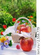 Купить «Дачный натюрморт - красные яблоки с цветами на белом столе в летний день», фото № 2558779, снято 22 мая 2011 г. (c) Светлана Зарецкая / Фотобанк Лори