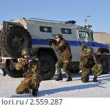 Купить «Полицейский спецназ», эксклюзивное фото № 2559287, снято 18 марта 2011 г. (c) Free Wind / Фотобанк Лори