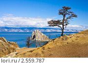 Байкальская весна, остров Ольхон. Стоковое фото, фотограф Виктория Катьянова / Фотобанк Лори