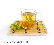 Купить «Липовый чай», фото № 2563431, снято 4 июля 2009 г. (c) Елена Завитаева / Фотобанк Лори