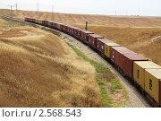 Купить «Железнодорожный состав среди пустыни», фото № 2568543, снято 24 мая 2011 г. (c) Светлана Кузнецова / Фотобанк Лори