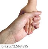 Купить «Рука ребенка в руке матери на белом фоне», фото № 2568895, снято 3 апреля 2011 г. (c) Светлана Ильева (Иванова) / Фотобанк Лори