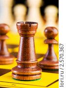 Купить «Шахматы», фото № 2570367, снято 21 января 2010 г. (c) Elnur / Фотобанк Лори