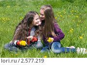 Купить «Две девочки подружки на зелёной лужайке с желтыми одуванчиками», фото № 2577219, снято 2 июня 2011 г. (c) RedTC / Фотобанк Лори