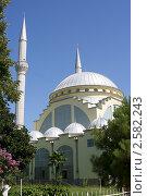 Мечеть. Стоковое фото, фотограф Игорь Чекаев / Фотобанк Лори