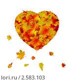 Сердце из осенних листьев. Стоковая иллюстрация, иллюстратор Владимир / Фотобанк Лори