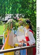 Купить «Праздник Троица в русской деревне», фото № 2584439, снято 7 июня 2009 г. (c) ElenArt / Фотобанк Лори