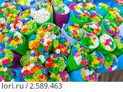 Купить «Букеты разноцветных маленьких цветов», фото № 2589463, снято 5 июня 2011 г. (c) Екатерина Овсянникова / Фотобанк Лори