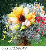 Купить «Фестиваль флористики «Цветень», букеты и композиции из цветов на фоне природы», фото № 2592451, снято 4 июля 2010 г. (c) ElenArt / Фотобанк Лори
