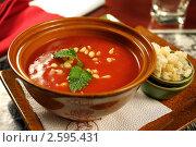 "Купить «Суп ""Гаспачо""», фото № 2595431, снято 1 июня 2011 г. (c) Виктор Топорков / Фотобанк Лори"