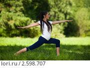 Купить «Активная беременная женщина делает спортивные упражнения в летнем парке. Забота о здоровье и беременность», фото № 2598707, снято 6 июня 2011 г. (c) Мельников Дмитрий / Фотобанк Лори