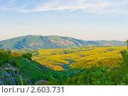 Горы. Шушинский район. Нагорный Карабах (2011 год). Стоковое фото, фотограф E. O. / Фотобанк Лори
