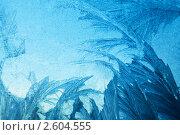 Купить «Зимняя фантазия, морозный узор на стекле», фото № 2604555, снято 11 декабря 2010 г. (c) ElenArt / Фотобанк Лори