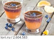 Купить «Фруктовый коктейль (смузи) из черники и апельсинового сока», эксклюзивное фото № 2604583, снято 15 июня 2011 г. (c) Давид Мзареулян / Фотобанк Лори