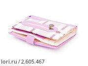 Купить «Розовый кошелек», фото № 2605467, снято 14 апреля 2010 г. (c) Elnur / Фотобанк Лори