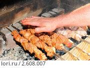 Купить «Шашлык», эксклюзивное фото № 2608007, снято 11 июня 2011 г. (c) Юрий Морозов / Фотобанк Лори