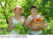 Купить «Женщины с урожаем овощей в саду», фото № 2609083, снято 5 июня 2011 г. (c) Яков Филимонов / Фотобанк Лори