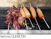 Купить «Куриная печень и шпикачки жарятся на мангале», фото № 2610731, снято 13 мая 2011 г. (c) Светлана Кузнецова / Фотобанк Лори