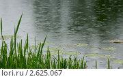 Купить «Озеро в дождь», видеоролик № 2625067, снято 2 июня 2011 г. (c) Михаил Коханчиков / Фотобанк Лори