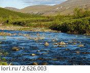 Купить «Полярный Урал», фото № 2626003, снято 6 июля 2010 г. (c) Сергей Бойков / Фотобанк Лори