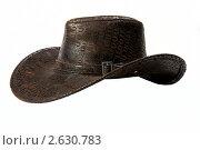 Шляпа ковбойская. Стоковое фото, фотограф Александр Кадацкий / Фотобанк Лори