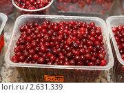 Купить «Ягода клюква», эксклюзивное фото № 2631339, снято 11 декабря 2010 г. (c) Дмитрий Неумоин / Фотобанк Лори
