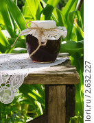 Купить «Баночка варенья на столе в саду в летний день, заготовки на зиму», фото № 2632227, снято 1 июня 2011 г. (c) Светлана Зарецкая / Фотобанк Лори