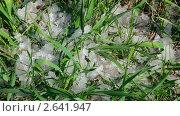 Купить «Талый снег на траве», видеоролик № 2641947, снято 10 мая 2011 г. (c) Михаил Коханчиков / Фотобанк Лори