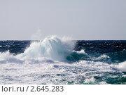 Купить «Волны во время шторма», фото № 2645283, снято 18 декабря 2010 г. (c) Яков Филимонов / Фотобанк Лори