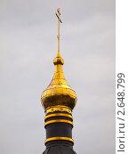 Купол церкви Александра Невского в Звенигороде (2011 год). Стоковое фото, фотограф Михаил Феоктистов / Фотобанк Лори