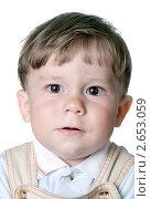 Купить «Портрет годовалого малыша», фото № 2653059, снято 12 июля 2011 г. (c) RedTC / Фотобанк Лори