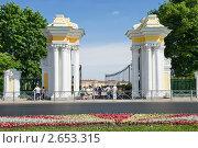 Купить «Ворота Верхнего сада Большого дворца. Петергоф», эксклюзивное фото № 2653315, снято 23 июня 2011 г. (c) Александр Щепин / Фотобанк Лори