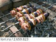 Шашлык из куриного мяса и баклажанов. Стоковое фото, фотограф Щеголева Ольга / Фотобанк Лори