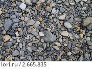 Фон из галечных камней. Стоковое фото, фотограф Татьяна Четвертакова / Фотобанк Лори