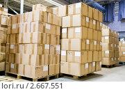 Купить «Коробки в производственном цеху», фото № 2667551, снято 21 июля 2018 г. (c) Дмитрий Калиновский / Фотобанк Лори