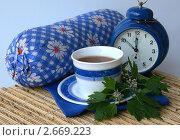 Купить «Целебный чай перед сном», фото № 2669223, снято 19 июля 2011 г. (c) Павлова Татьяна / Фотобанк Лори