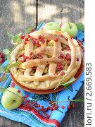 Купить «Домашний пирог с яблоками и красной черемухой», фото № 2669583, снято 20 июля 2011 г. (c) Володина Ольга / Фотобанк Лори