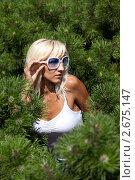 Купить «Портрет девушки в сосновых ветвях», фото № 2675147, снято 21 июля 2011 г. (c) Михаил Иванов / Фотобанк Лори