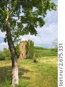Купить «Весенний пейзаж с каменной башней», фото № 2675331, снято 14 мая 2011 г. (c) Борис Панасюк / Фотобанк Лори