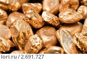 Купить «Золотые самородки», фото № 2691727, снято 9 мая 2010 г. (c) bashta / Фотобанк Лори