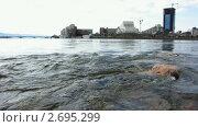Город на берегу реки. Красноярск. (2010 год). Стоковое видео, видеограф Юрий Пономарёв / Фотобанк Лори