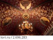 Дворец Волкова-Юсупова (2010 год). Редакционное фото, фотограф Денис Овсянников / Фотобанк Лори
