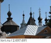 Муром. Купола храмов монастырей (2009 год). Стоковое фото, фотограф Светлана Островская / Фотобанк Лори