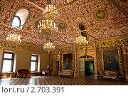 Зал для приемов в Палатах Волкова-Юсупова (2011 год). Редакционное фото, фотограф Рыбакова Людмила / Фотобанк Лори