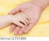 Молодая мама держит в ладони ручку новорожденного малыша. Стоковое фото, фотограф Антон Железняков / Фотобанк Лори