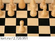 Купить «Белые начинают», фото № 2720951, снято 15 августа 2011 г. (c) Игорь Веснинов / Фотобанк Лори